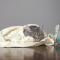 Cara Mengobati Kucing Flu