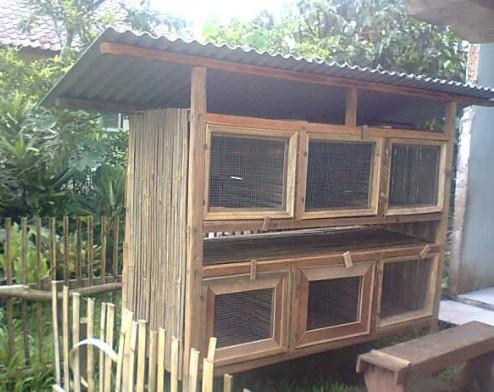 Kandang Kelinci Bertingkat dari Bambu