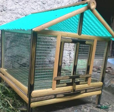 Kandang Kelinci di luar rumah