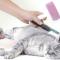 Pengertian Grooming Pada Kucing dan Daftar Harga Grooming (TERLENGKAP !)