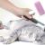 Grooming Pada Kucing